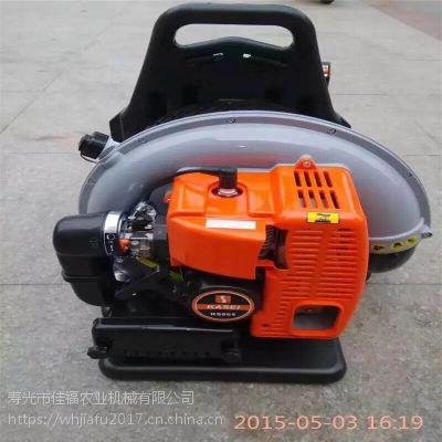 甘肃永登高压背负式吹雪机 背负式电启动风力吹雪机 落叶清扫机