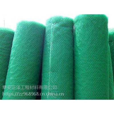 武汉三维植被网护坡/正泽