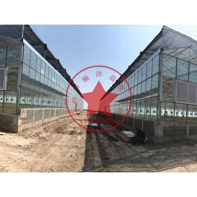 智能西红柿种植温室大棚——青州瀚洋玻璃连栋温室