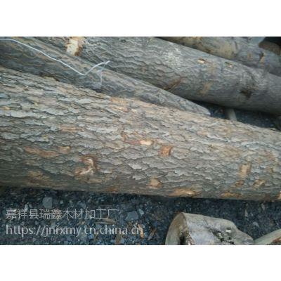 长期供应梧桐木香椿木苦楝木原木