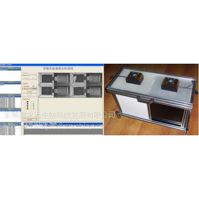 东莞博之远 BZY-DGC穿梭实验视频分析系统