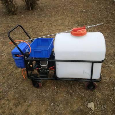 全新直销蔬菜大棚推车喷雾器果园高压打药车养殖场消毒喷药机