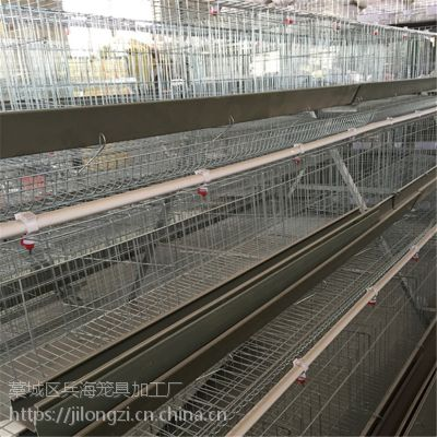层叠式蛋鸡笼养鸡设备阶梯式电镀锌鸡笼出口质量
