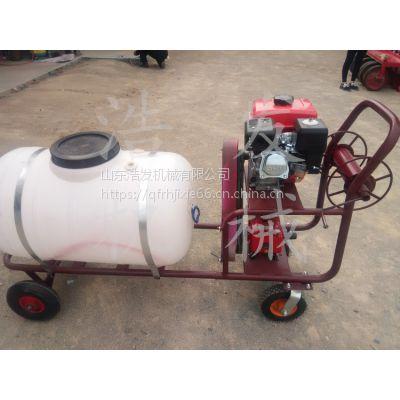 果园喷药泵手推式喷雾器 电机带动打药机