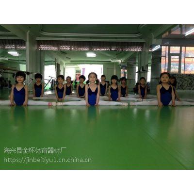 沧州艺美舞蹈地胶PVC舞优系列专业舞蹈地胶