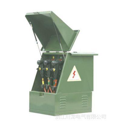 厂家直销 1OKV电缆分支箱 一进一出电缆分支箱