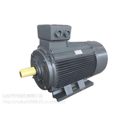 供应高效率电动机YE2 315S-4-110B3 山东开元电机