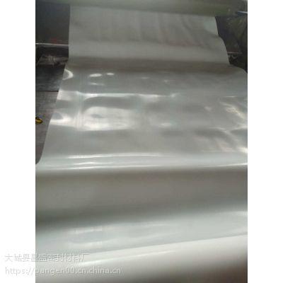 昌盛 厂家提供软四氟板 PTFE制品