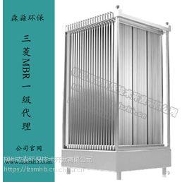 日本三菱化学一级代理商60E0015SA型号超滤膜微孔过滤设备占地小30*1250*2000
