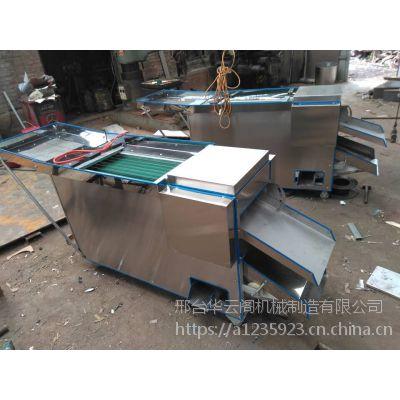 新型滚刀式辣椒切段机商用小型辣椒切段机重庆地区厂家直供
