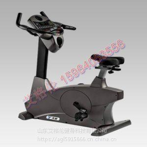 立式车室内健身器材商用型立式车全方位锻炼身体山东艾格伦健身器材厂家直销