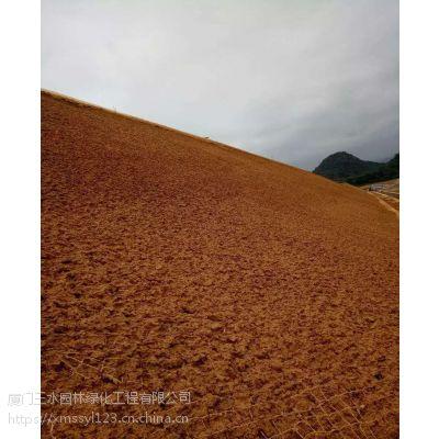 三水园林供应土质边坡液压喷播植草方案四川边坡植草公司
