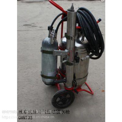 QWMT-35推车式脉冲气压喷雾水枪