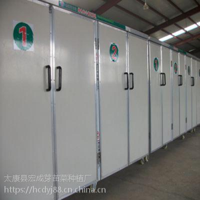 上溪日产2000斤全自动豆芽机厂家供应