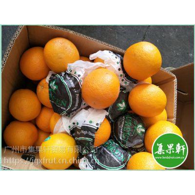新鲜水果批发埃及进口夏橙Valencia供应广州江南市场