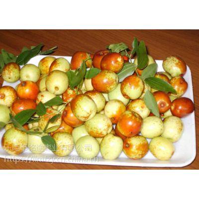 批发供应 绿色纯天然 特产梨枣 红枣 大枣