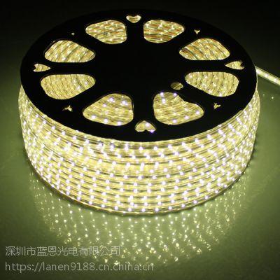 蓝恩光电厂家直销 工程爆款 高压灯带220V