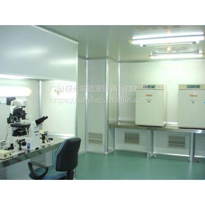 无菌室净化工程公司 禄米 万级