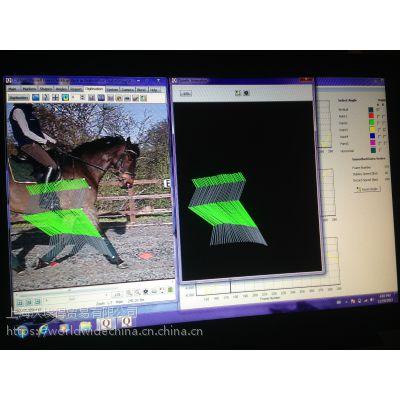 马匹步态分析系统