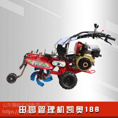 普航小型手扶开沟培土机 186型柴油耕田机 手把可旋转的田园管理机厂家