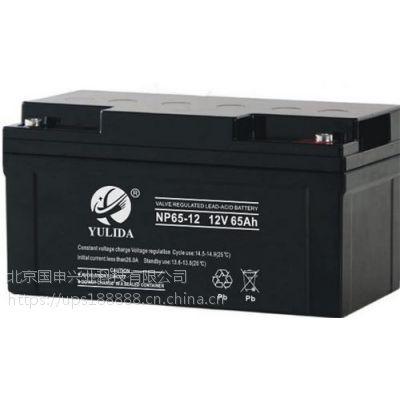 YULIDA宇力达蓄电池NP100-12 12V100AH
