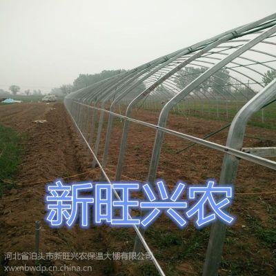 新旺兴农养殖大棚7510种植大棚建设合理