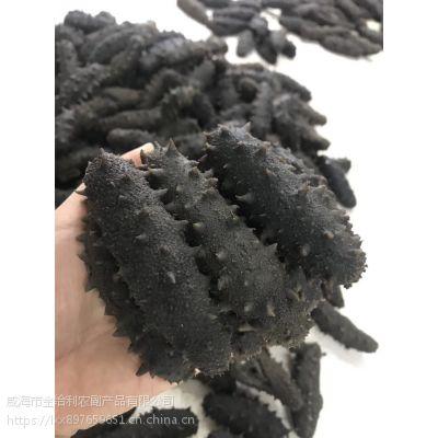 烟台海参批发市场在哪 海参干的多少钱一斤