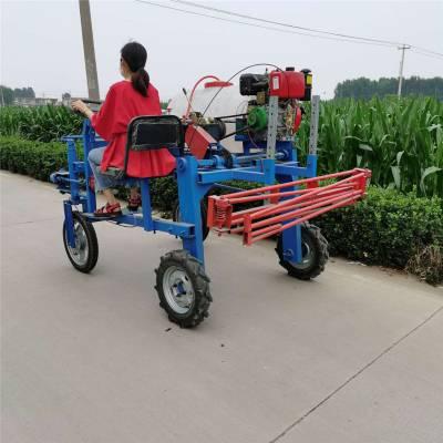 农用四轮手推打药机 普航 直销管式高压打药车 风送式汽油喷药机报价