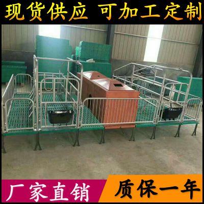 母猪产床 这种猪场适用 热镀锌管2.5厚双体产床 出口质量