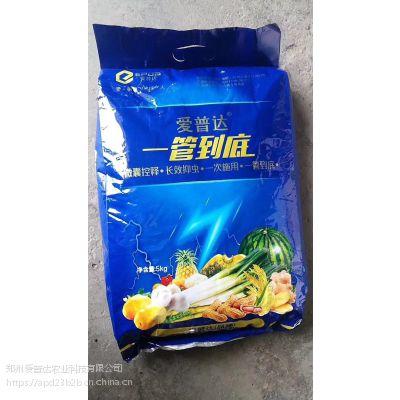 大葱管到底杀虫药肥山东大葱专用肥一次施用一季无虫