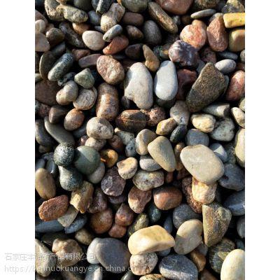 本诺厂家供应精品雨花石 抛光鹅卵石 玉石鹅卵石