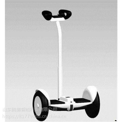 两轮电动平衡车,平衡车,海科贸易年货促销