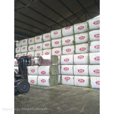 美国进口苜蓿草供应商