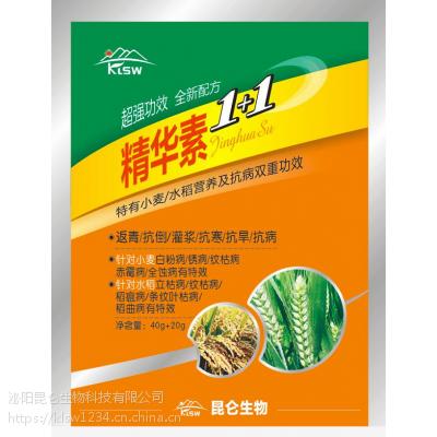 供应小麦水稻叶面肥 稻麦精华素1+1 营养抗病双重功效