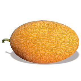 新疆甜瓜种子丨关于甜瓜的这些知识你得知道
