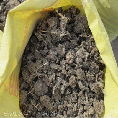 山东哪有鸡粪有机肥农家肥生产厂家天然晾晒纯干鸡粪块多少钱一吨