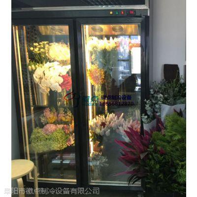 徽点品牌双门鲜花柜,石家庄鲜花蛋糕店冷藏柜,叶材花店风冷展示柜