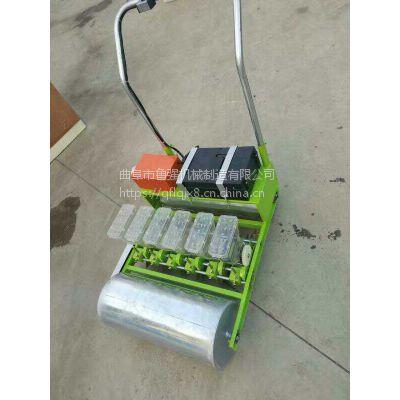 吉林手推轻便手推式播种机 6行白菜种植机 鲁强机械