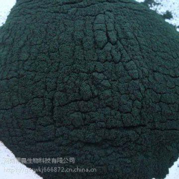批发 螺旋藻粉食品级螺旋藻粉 营养强化剂 量大从优