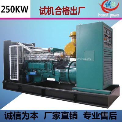 诚欣动力250KW柴油发电机组 现货供应 油耗低