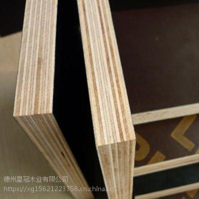 厂家直销 建筑模板耐腐蚀无空洞星冠木业