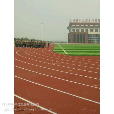 环保塑胶跑道设计与施工