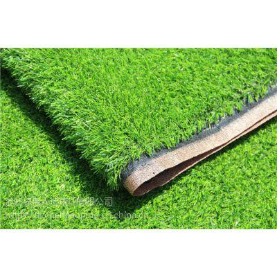 人造草坪地毯幼儿园仿真草坪婚礼展览运动草皮人工塑料假草皮批发