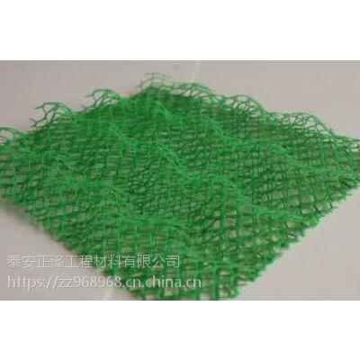 三维土工网垫坡面施工多种现货供应 淮安市三维网价格实惠