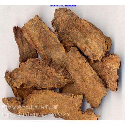 管花肉苁蓉提取物 毛蕊花糖苷 尚诚生物