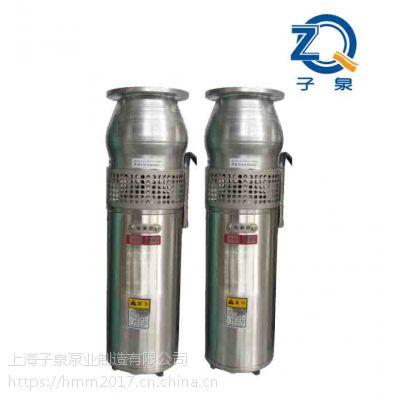 QSP潜水喷泉专用泵 不锈钢材质 规格型号