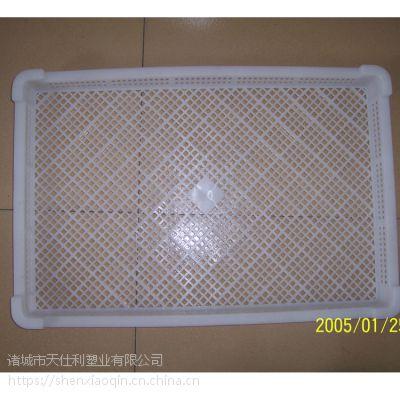 批发塑料单冻器 冷冻盘子 速冻盘子