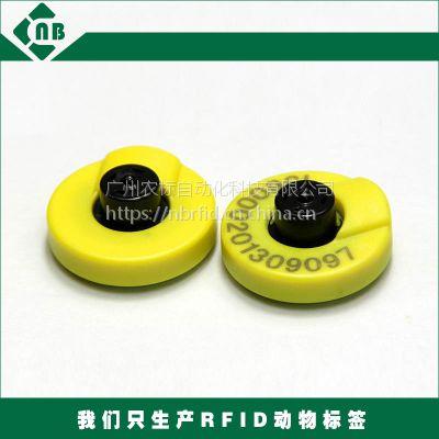 专业生产 RFID猪牛羊 溯源管理 电子耳标 EM4305芯畜牧业耳标