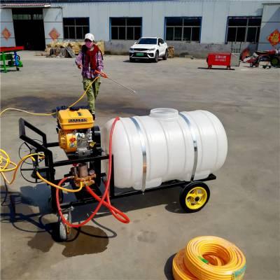 果树大容量喷雾器 农用园林喷雾器 手推式汽油打药机