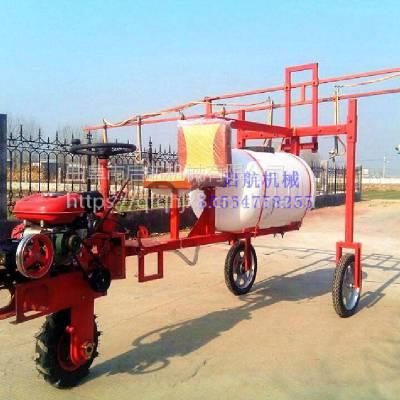 启航新款自走式打药喷雾机 湖北农业打药机 高压机动喷雾器厂家